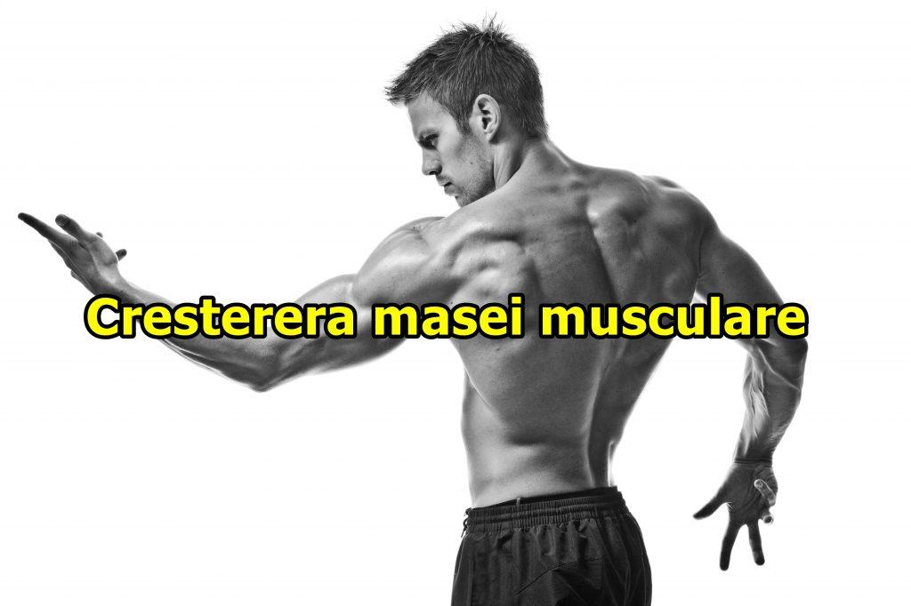 cresterea-masei-musculare-dezvolare-culturism-hipertrofie-antrenament-plan