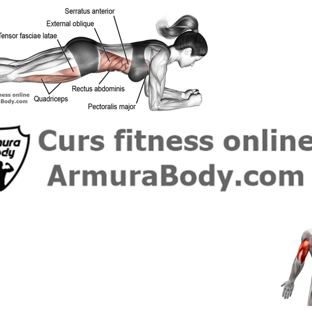 curs, fitness, antrenor, personal. instructor. culturism, antrenament, exercitii, trainer, coach